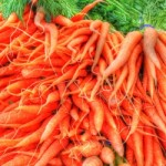 Carrots bunch_1389068-m
